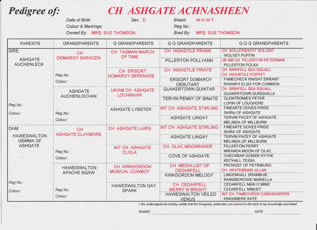 Achnasheen