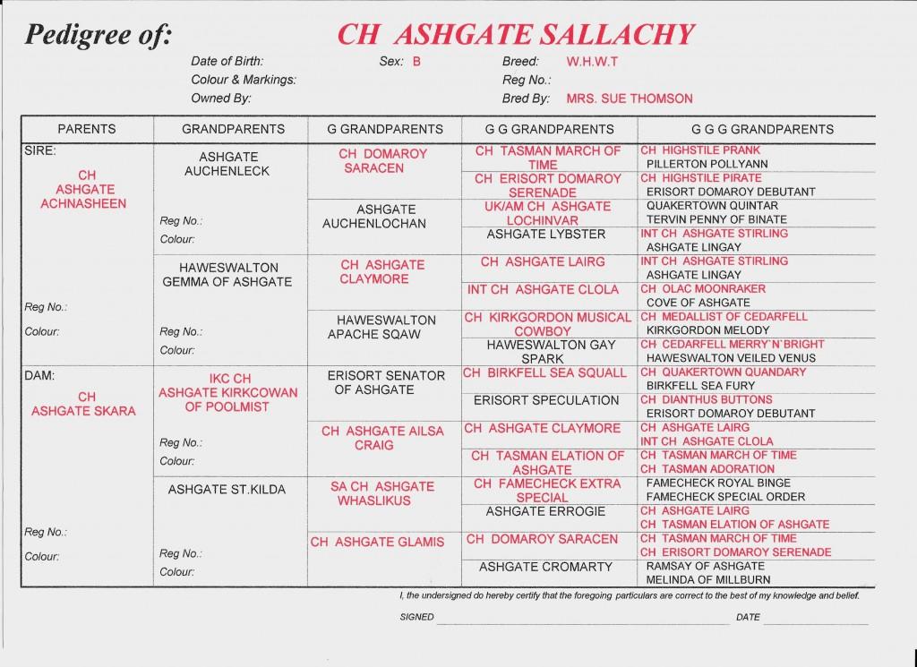 Sallachy