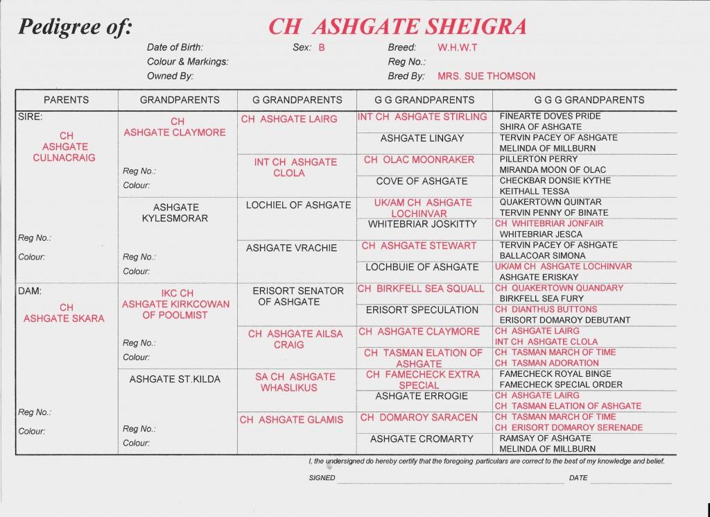 Sheigra