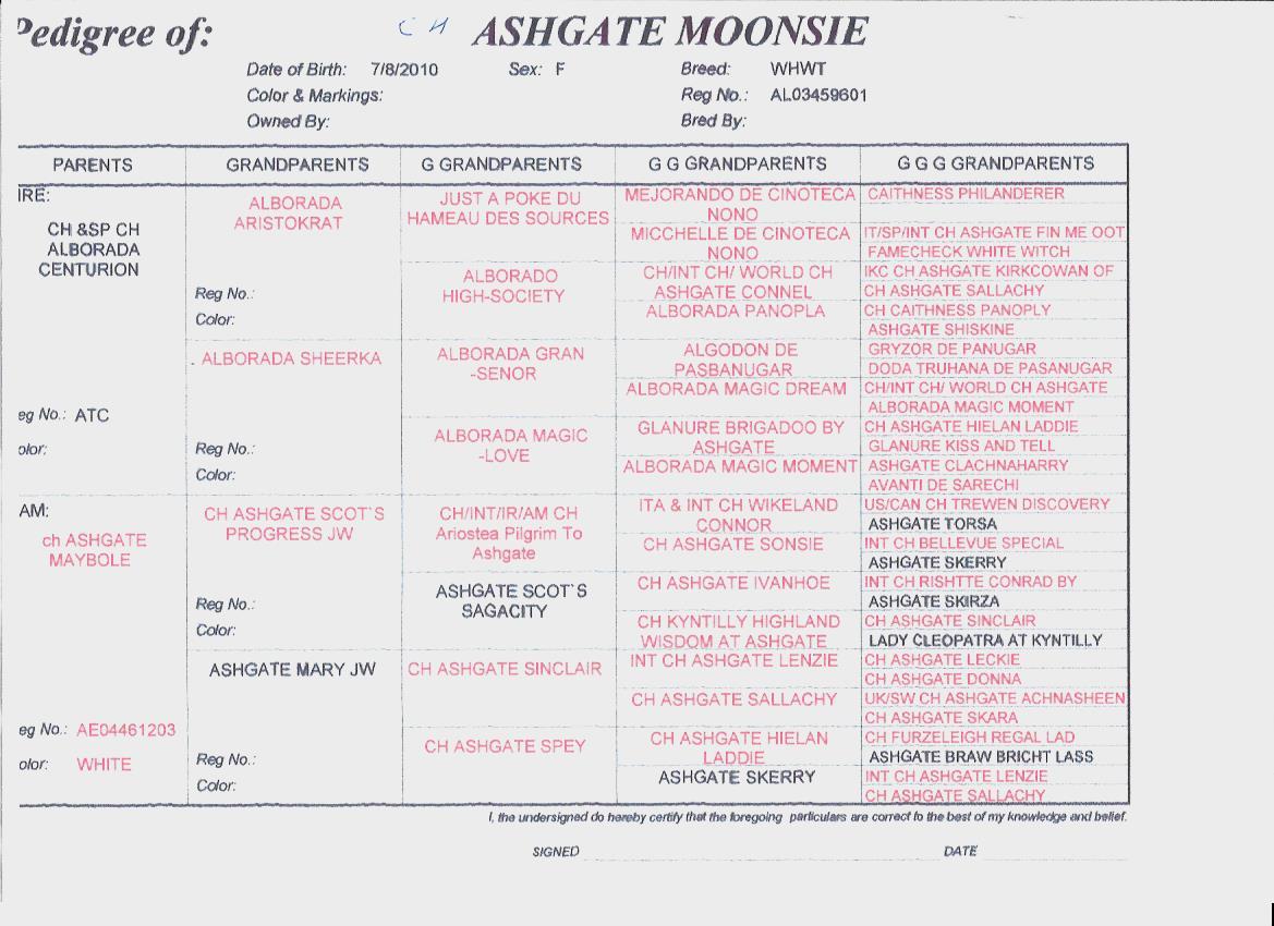 Moonsie